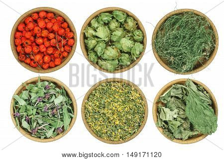 Set of healing herbs. Dried grass for use in alternative medicine spa herbal cosmetics herbal medicine preparing infusions decoctions tinctures powders ointments butter tea bath.