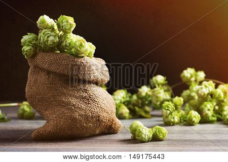 Small burlap sack of hops for making beer