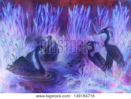 decorative illustration in violet and lila tones of birds swimming on pond with reeds.