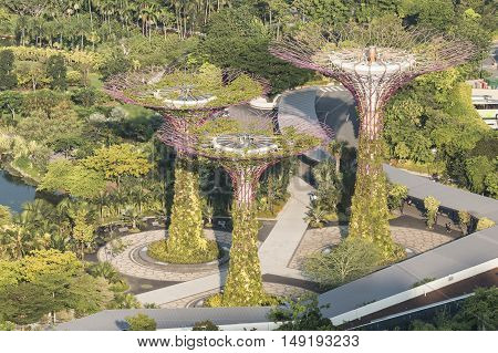 SINGAPORE - JUNE 25 2015 : Super trees Grove at Gardens by the Bay.