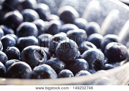 Close up of fresh Blueberries in a bowl