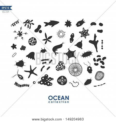 set of small sea creatures and microbes, oceanic plankton isolated on white, vector illustration of sea krill
