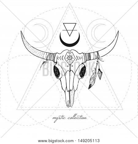 vector cow skull, vector boho illustration with decorative hand drawn animal skull with feathers on horns