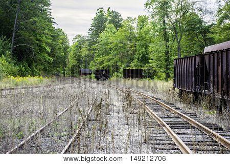 abandon railroad tracks and coal cars in rural area