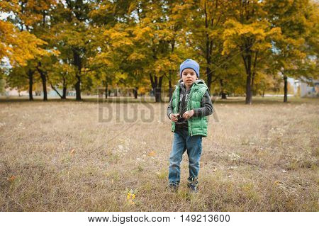 Little Boy In Autumn Land Scape