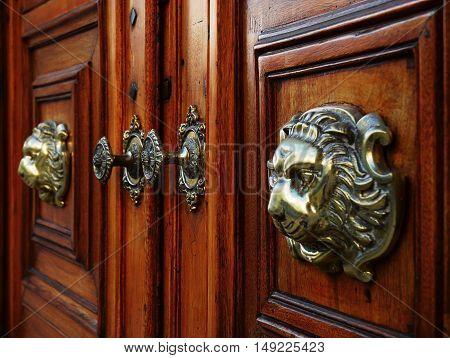 Brass door knobs on a solid wooden front door.