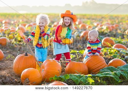 Little girl boy and baby picking pumpkins on Halloween pumpkin patch. Children playing in field of squash. Kids pick vegetables on a farm in Thanksgiving holiday season. Family having fun in autumn.