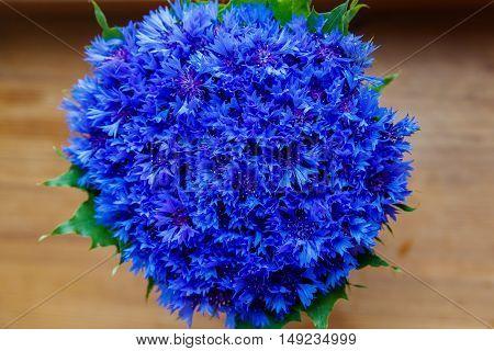 A bouquet of beautiful spring flowers blue cornflower cyanus on the window. Blue flowers pattern. Macro photo.
