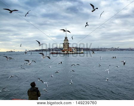 Istanbul, Turkey - December 04, 2013: Maiden's Tower and seen people feeding seagulls. European part of Istanbul in the background against the shore. Left Blue Mosque medium Hagia Sophia Topkapi palace dome seem right.