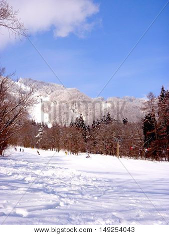 Snowy ski fields in February, Hakuba Japan