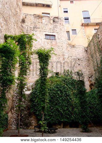 Greenery reclaiming buildings, Girona, Costa Brava, Spain