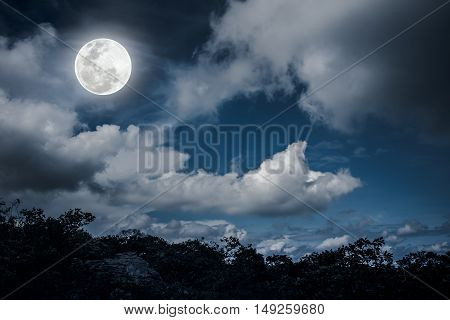 Silhouettes Of Tree And Nighttime Sky With Clouds, Bright Full Moon Would.