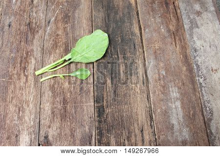 Chinese kale fresh vegetable on Wooden floor background
