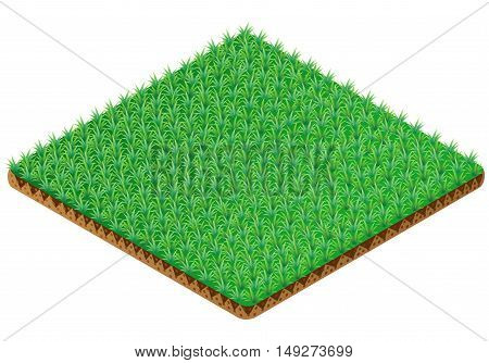 Green Grass tile. Isometric view. Vector illustration.
