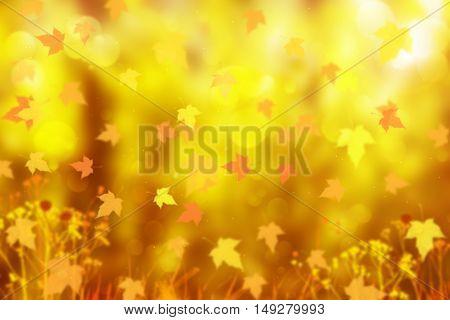 Autumn background. Nature bokeh background. Golden autumn concept. Gold background. Fall background. Maple leaf. Magic autumn concept. Fall season. Autumn leaves. Season background.