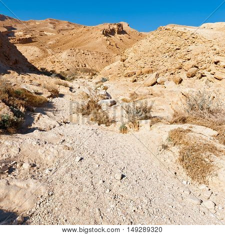 Stones of Grand Crater in Negev Desert