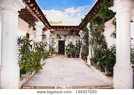 Traditional house with indoor garden in Oaxaca, Mexico.