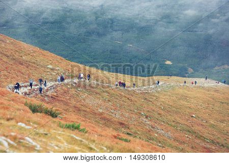 group of hikers in autumn mountains of Hight Tatras, Poland