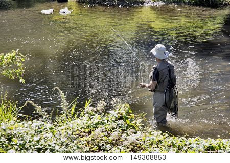Fly Fishing In Lesse River, Belgium