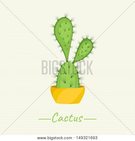 Cacti Bunny Ears plant in a flower pot on beige background. Opuntia Microdasys. Home interior floral design elements. Green succulent plants nature concept. Tropical exotic botany collection.