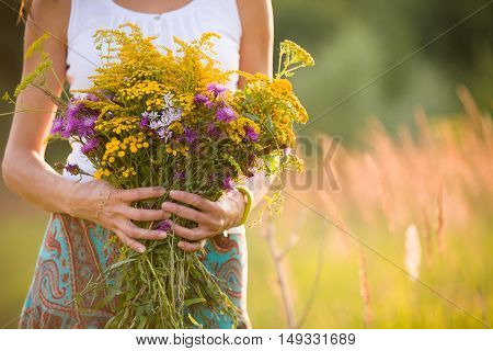 Closeup of woman's hands holding beautiful bunch of wild flowers on a sunny summer day. Girl with bouquet of yellow and purple flowers on a meadow.