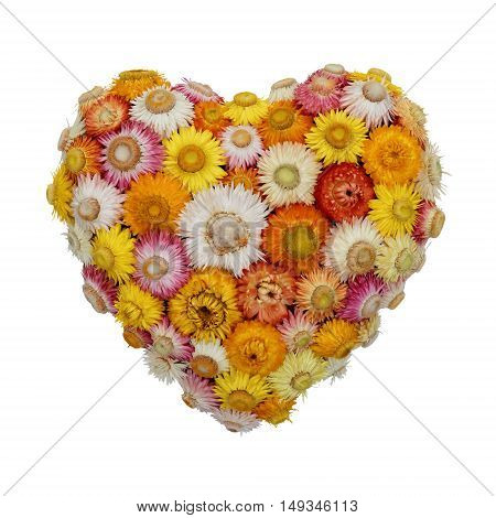 Heart-Shaped Everlasting Flower Arrangement, isolated on white