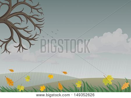 Landscape with autumn nature sky with rain clouds. Vector graphics. Background