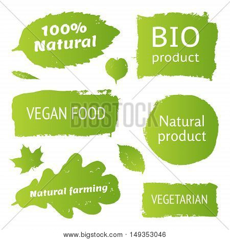 Natural organic bio product vegan food natural farming vegeterian labels shapes. Vector collection of paint brush strokes isolated on white background. Hand drawn abstract design elements set.