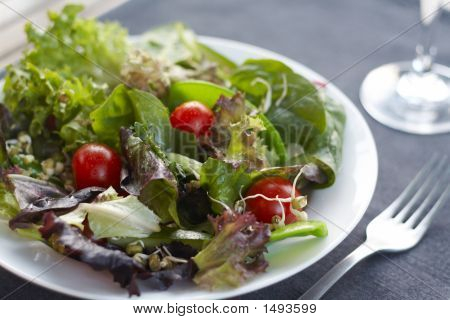 Healthy Lunch, Crisp, Fresh Salad