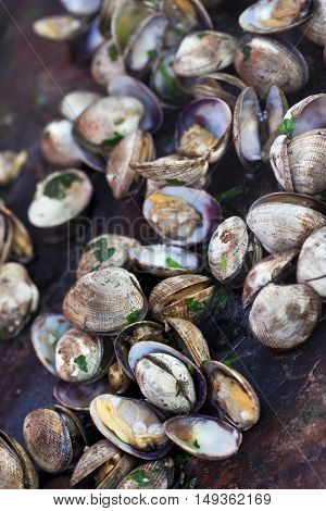 Clams And Parsley