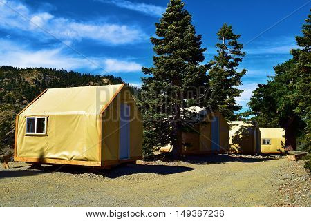 Modern rustic style tent cabins where people can enjoy a comfortable camping experience taken at a forest in Mt Baldy, CA