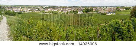 Landscape In Burgundy