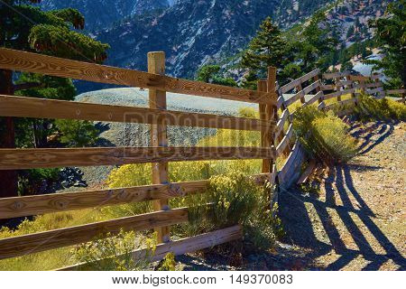 Rustic wooden style fence surrounded by flowers at a Pine Forest taken in Mt Baldy