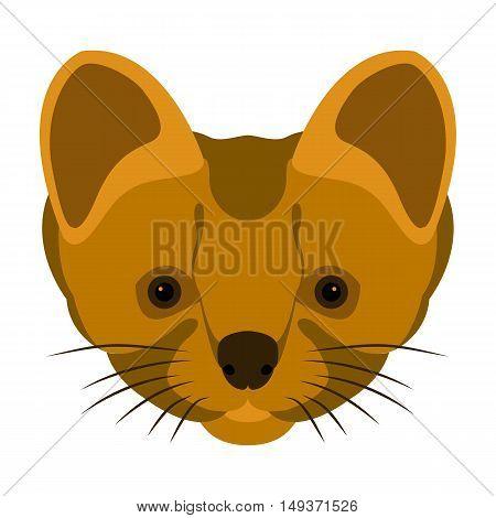 stoat head vector illustration style Flat face