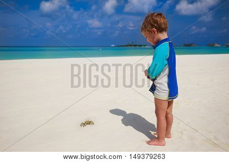 Child looking to crab at tropical beach with overwater bungalows