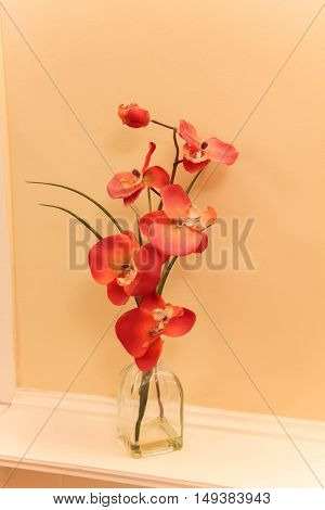 beautiful orange orchid in clear glass vase on a shelf