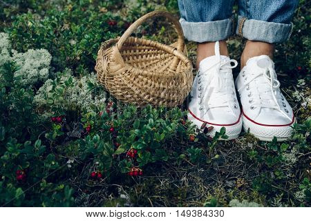 Human legs in sneakers close up in the forest standing next to a basket and red berries. People gather berries