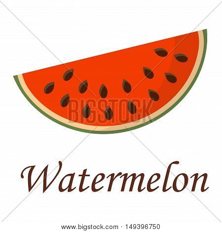 Slice of watermelon gourmet fruit sweet piece on white background. Vegetarian fresh part watermelon slice nature dessert. Freshness watermelon slice summer ripe diet red juicy food.
