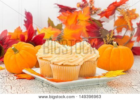 Pumpkin spice cupcakes in front of colorful fall foliage.