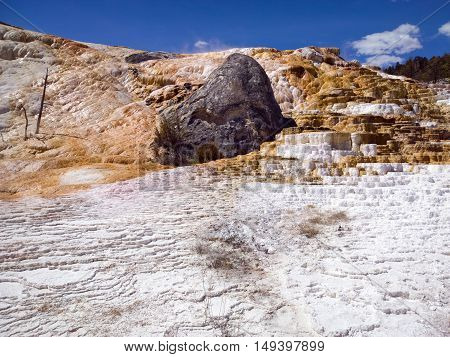 Algae tinted travertine terrace of calcium carbonate deposits at Mammoth Hot Springs Yellowstone National Park USA