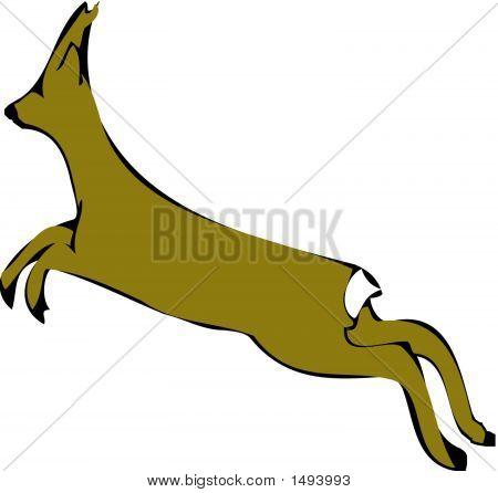 Roe Deer.Eps