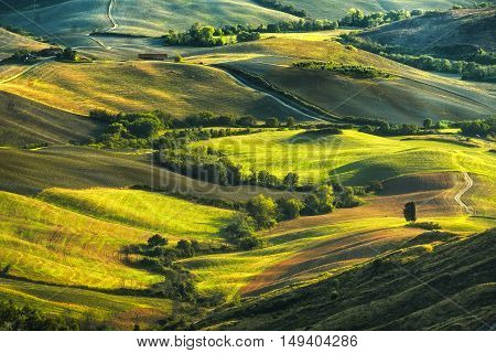 Tuscany rolling hills on misty sunset. Rural landscape. Green fields and farmlands. Italy Europe