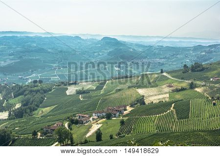 View of fields and vineyards of La Morra from above, Italy