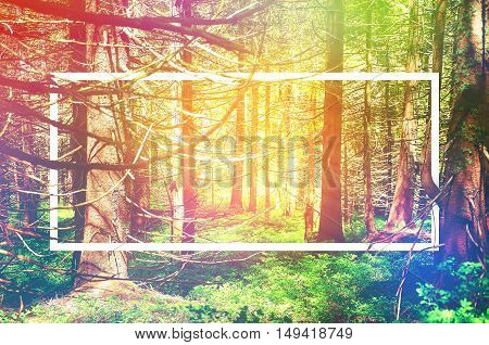 White Frame, Integrated In The Landscape, For Your Content. Fairy Tale Forest, Mountain Landscape, N