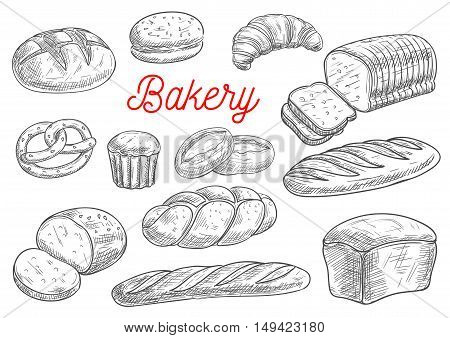 Bread sorts and bakery products. Rye bread, ciabatta, wheat bread, muffin and bun, bagel, sliced bread and french baguette, croissant and pretzel, biscuit. Vector sketch