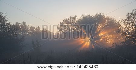 First lights of the sun in morning fog