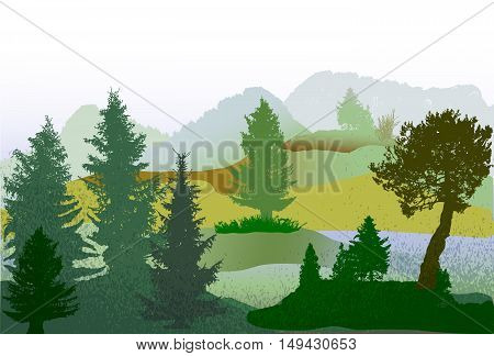 Autumn wild forest landscape with conifers, grass and hills. Panoramic green, brown and blue autumn landscape with first snow