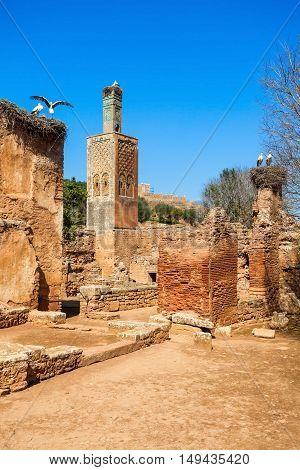 Chellah In Rabat