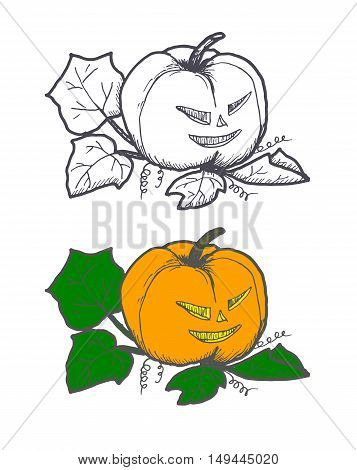 Hand drawn doodle Halloween pampkin. Black pen objects and color drawing. Design illustration for poster, flyer over white background.