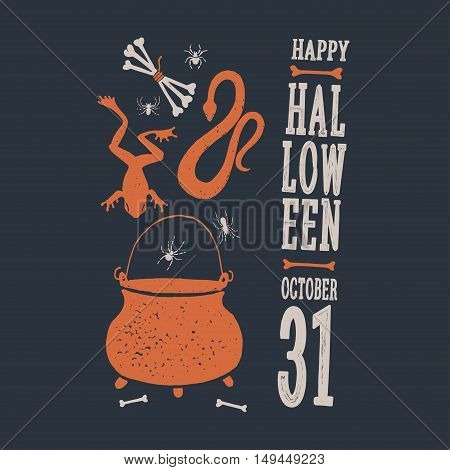 Halloween. Witch Objects. Witchcraft and magic. Set of decorative elements to decorate the posters and greeting card.